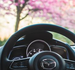 MazdaBlossomB-8.jpg