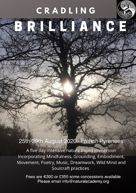 title August 20.jpg