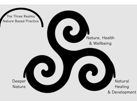 The Three Realms of Nature Based Practice