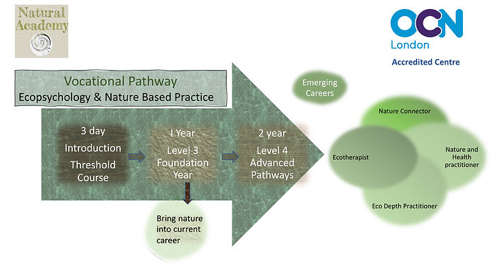 Natural Academy Ecopsychology Pathway.jp