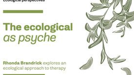 BACP thresholds and Rhonda's article on NA model of ecopsychology and training.