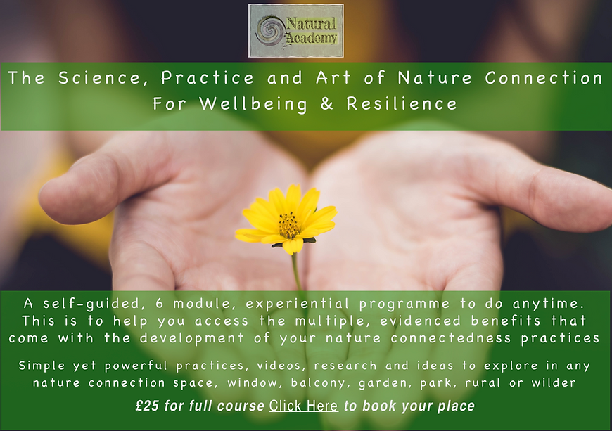 The Science, Art and Practice of NC 2.pn