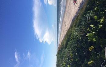 Beach 2 at Canaveral.jpg