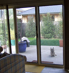 C&R Home Ideas Stainless Screen Sliding Door Melbourne