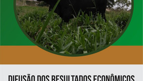 DIFUSÃO DOS RESULTADOS ECONÔMICOS DE SISTEMAS DE TERMINAÇÃO DE BOVINOS DE CORTE À PASTO