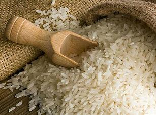 img_como_plantar_arroz_22090_600.jpg