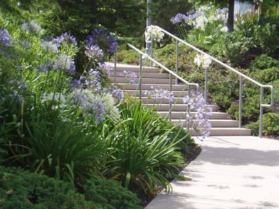 Stair planting detail.jpg