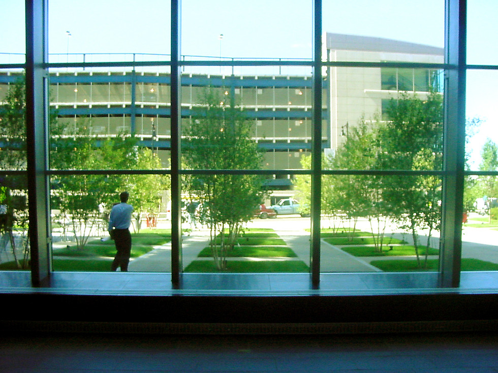 View to outside.jpg