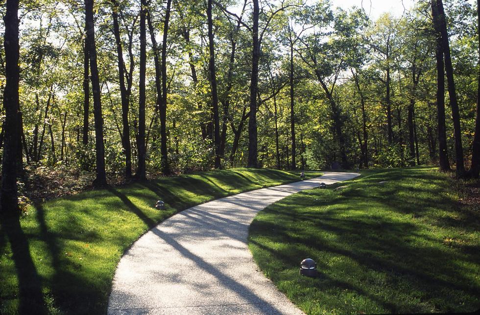 Path into woodland.jpg