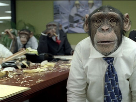 Marketing is so easy, you can train a chimp to do it.