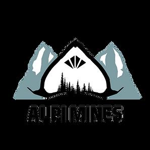 Logo_détouré.png