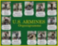 Organigramme U.S. Armines 2.png