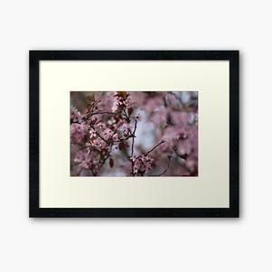 work-31277405-framed-art-print.jpg