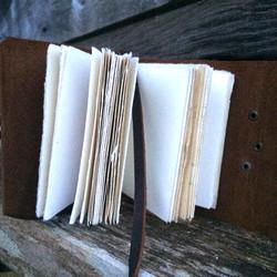 Soaring Scavengers Journals