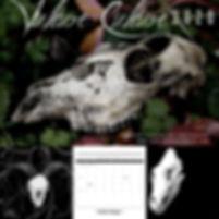 VultureCulture1.JPG