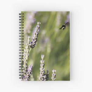 work-31280421-spiral-notebook.jpg