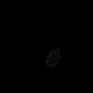 cropped-cropped-cropped-cropped-cropped-cropped-la-fille-du-3c3a8me_logo_noir111.png