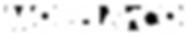 MorelCo_Logo_Lores_TransparentBG_White.p
