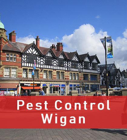 Pest Control in Wigan