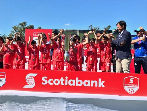 Organizacion Torneo Scotiabank