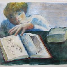 Looking at the Bird Book