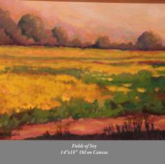 Fields of Soy