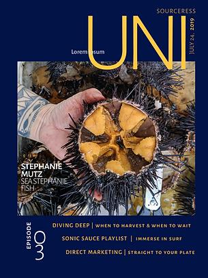 Uni Sea Urchin Sea Stephanie Fish Stepha