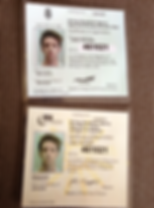 Adi badge, Driving Instructor, driving lessons, driving school, ooosh, one L of a drive, Lancashire, Ormskirk, Southport, Liverpool, formby, ainsdale, church town, merseyside, pass, training, Jamie Traynor, DVSA, crash course, Intensive, Aughton, liverpool