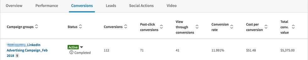 LinkedIn Conversion Analysis