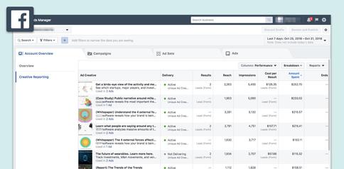 Platform: Facebook and Instagram