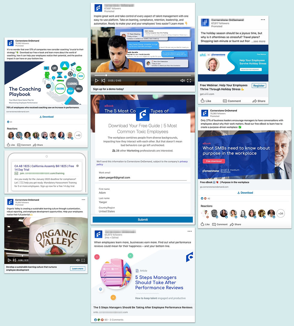 LinkedIn campaign and ad examples