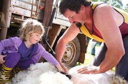 BSFFD-Little-Girl-Shearing