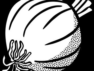 Peeling the College Onion