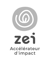 Logo_ZEI_2020-04_edited.png