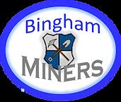 bingham miners jpeg.png