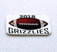 ss grizzlies football sports.jpg