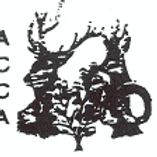 logo ACCA.png