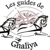 guides de ghaliya.png