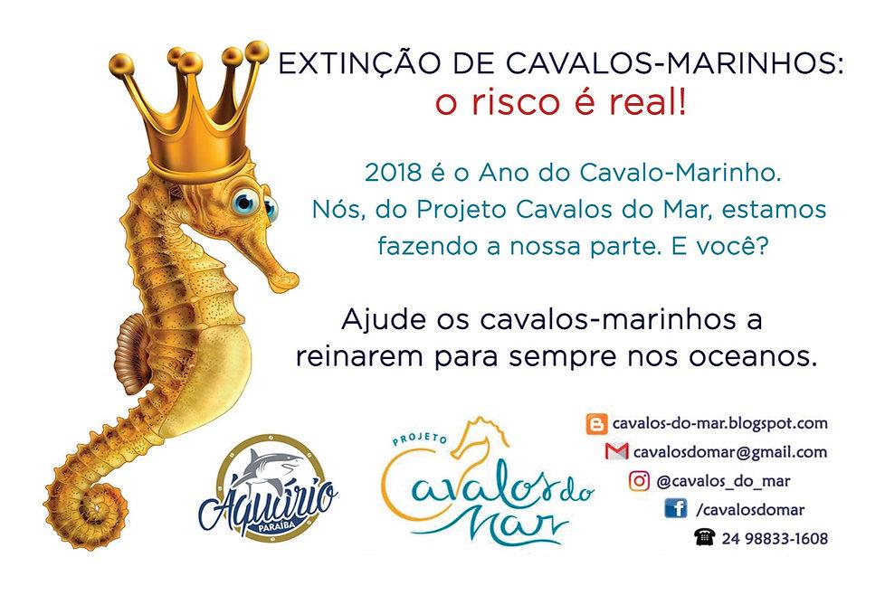 Cartaz Cavalo Marinho1.jpg