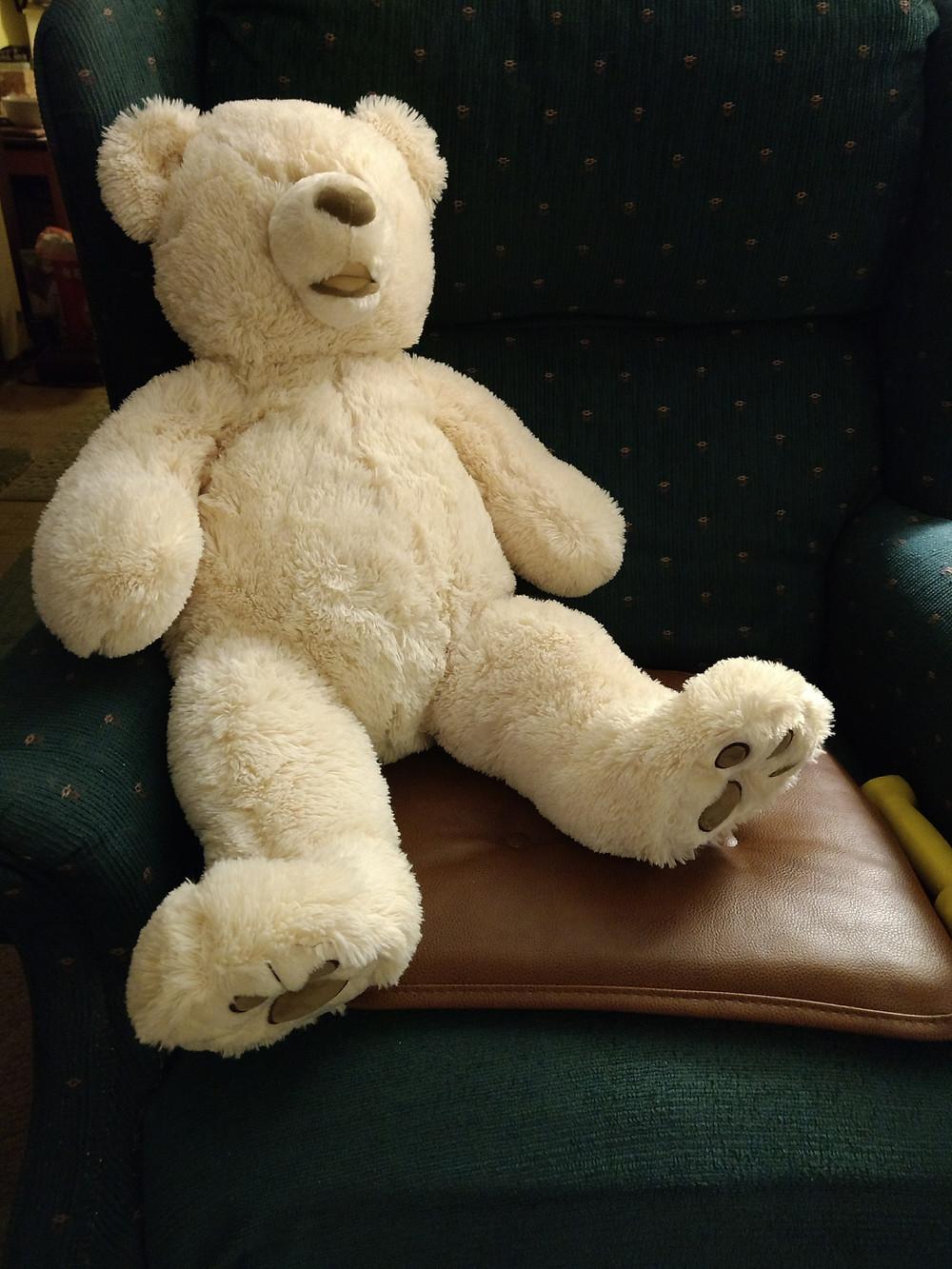 Newest Bear!