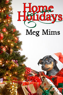 Home for the Holidays by Meg Mims