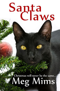 Santa Claws by Meg Mims