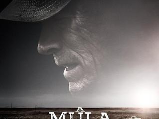 A MULA (The Mule)