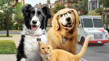 COMO CÃES E GATOS 3: PELUDOS UNIDOS  (Cats and Dogs 3: Paws Unite)