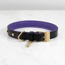 1. Dog_Collar_Brass_Medium_Front.jpg