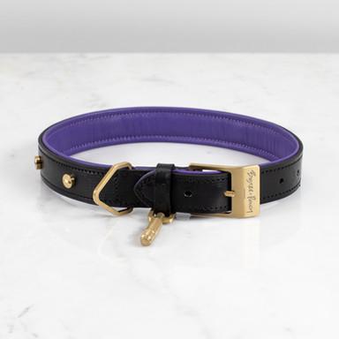 DOG COLLAR / BLACK / PURPLE / BRASS
