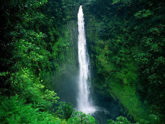 Hawaii Retreat - TBA