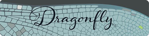 Dragonfly_Week 15_Lazy.jpg