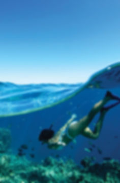flyer tahiti-swimmer.jpg