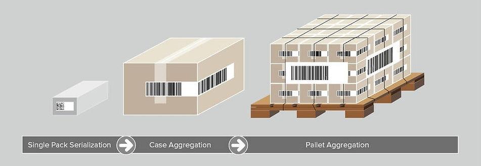 Carton-Case-Pallet.jpg